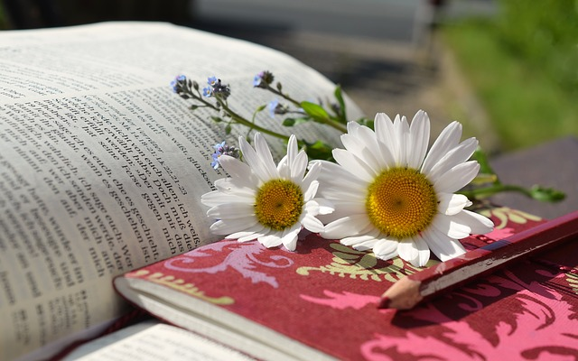 #book with daisy